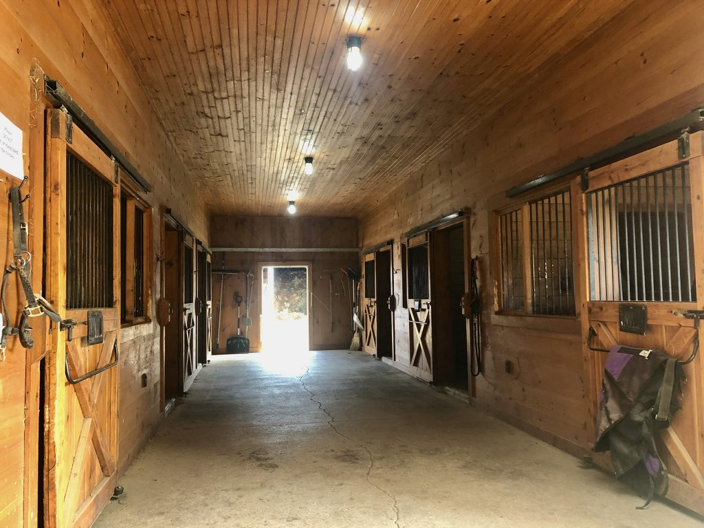 horses and boarding